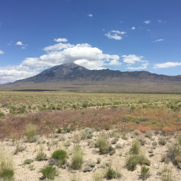 40 Acres Wendover, Elko County NV (16-011)_075-004-093