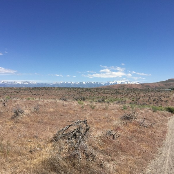 4.33 Acres Elko, Elko County NV (16-004)_025-027-007#8