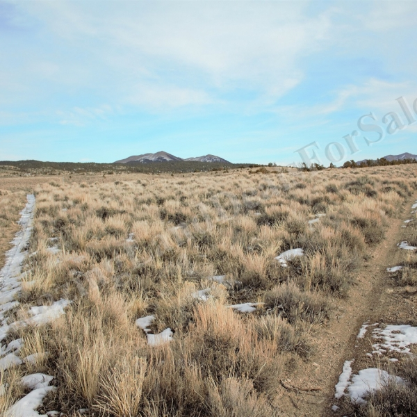 33.6 Acres Montello, Elko County NV (16-013)_010-14B-025